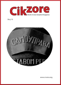CIK_010
